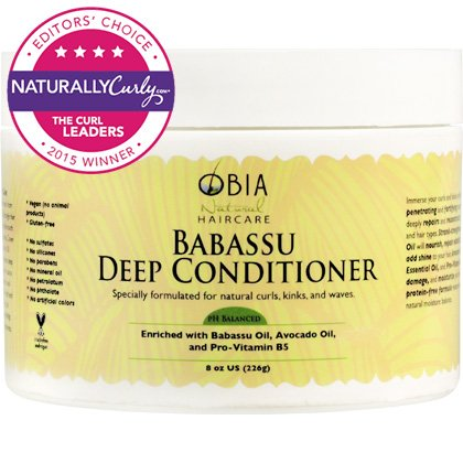 Obia Natural Hair Care Babassu Deep Conditioner